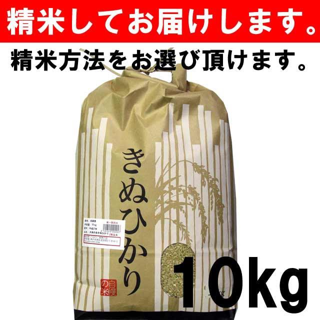 【平成30年度産】 滋賀県産きぬひかり 一等玄米1...