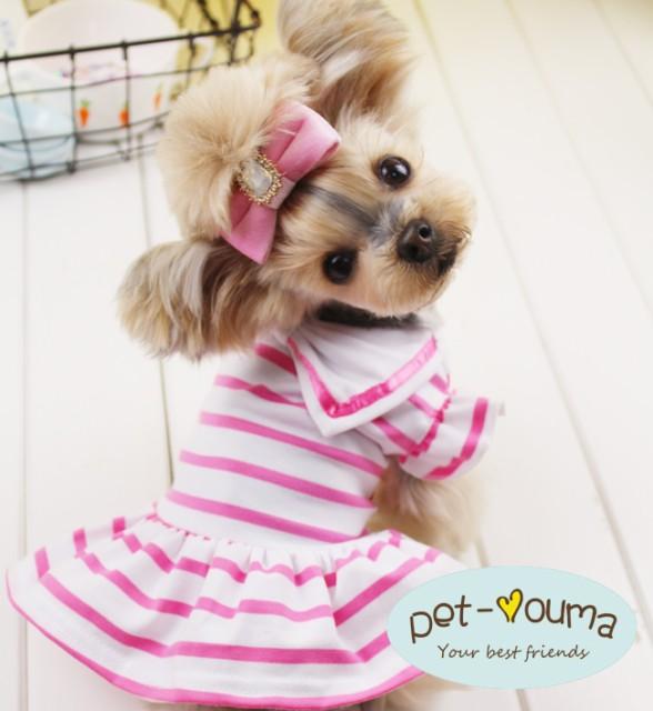 5/28再入荷【送料無料】 Ziimo&Co.  小型犬用 ボ...
