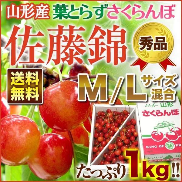 山形県産 さくらんぼ【武田さんの 朝摘み 葉取ら...