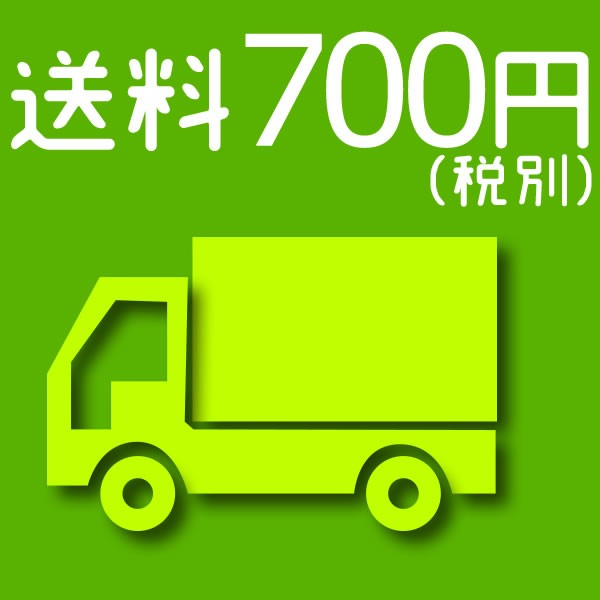 送料 700円(税別)