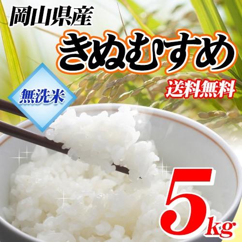 【無洗米】29年産岡山県産きぬむすめ5kg  送料...