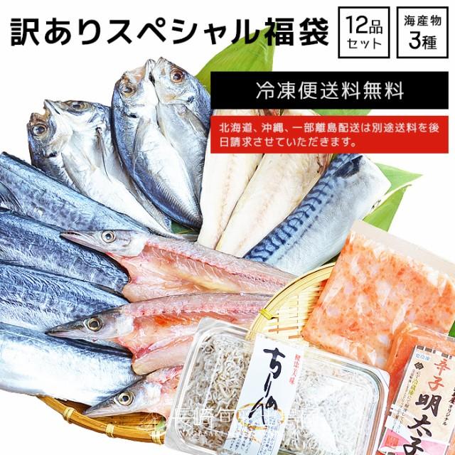 【訳あり】【規格外】 スペシャル福袋 干物+厳選...