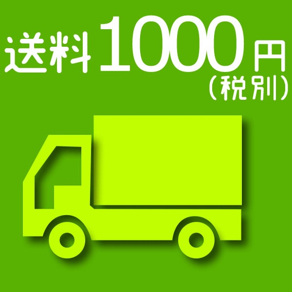 送料 1000円(税別)