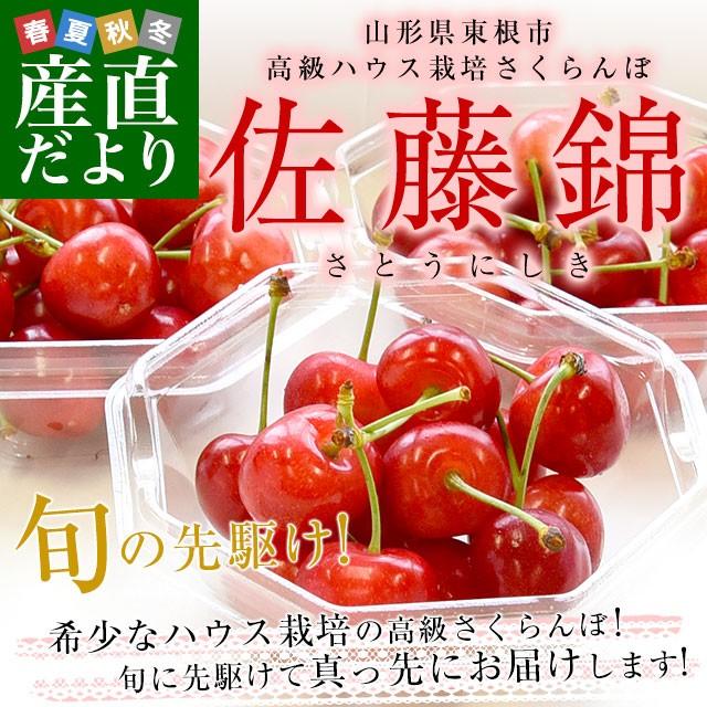 山形県より産地直送 温室栽培さくらんぼ 佐藤錦 ...