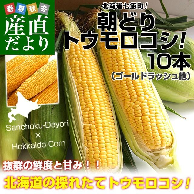 北海道七飯町産 池田さんグループの朝どりトウモ...