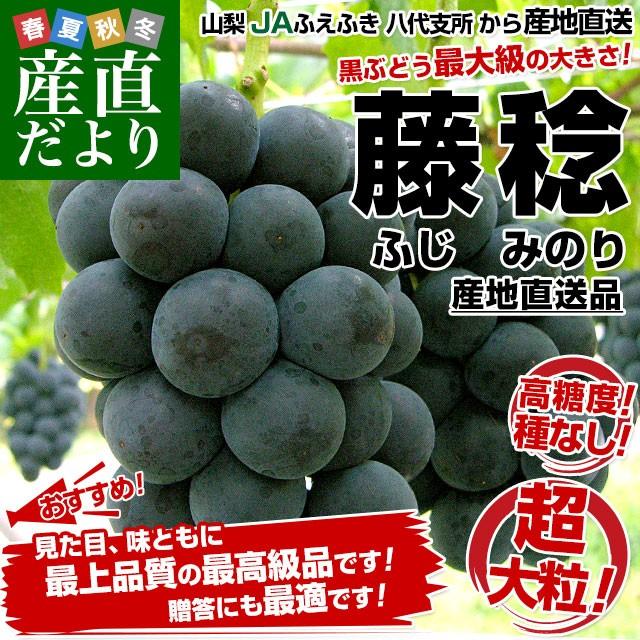 送料無料 山梨県より産地直送 JAふえふき 八代...