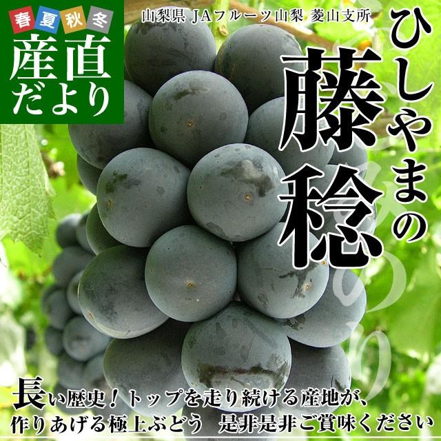 山梨県より産地直送 JAフルーツ山梨・菱山支所 ひ...