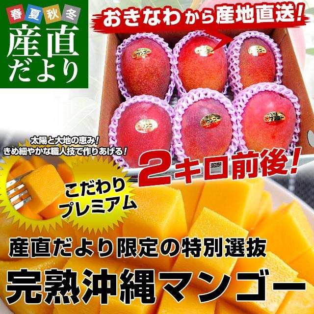 沖縄県より産地直送 JAおきなわ 完熟沖縄マンゴー...