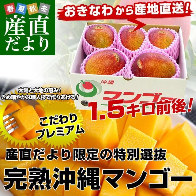送料無料 沖縄県より産地直送 JAおきなわ 完熟マンゴー 約1.5キロ(3から6玉入) マンゴー クール便  産直だより