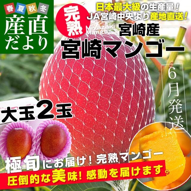 宮崎県より産地直送 JA宮崎中央 宮崎完熟マンゴー...