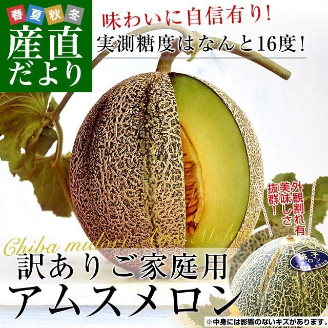 送料無料 千葉県産 JAちばみどり アムスメロン 訳...