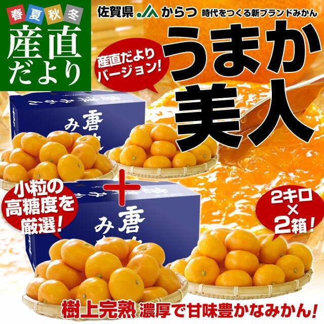 送料無料 佐賀県 産地直送 JAからつ 小粒うまか美人 高糖度みかん Sから3Sサイズ 約2キロ×2箱  U・M・K美人 産直だより