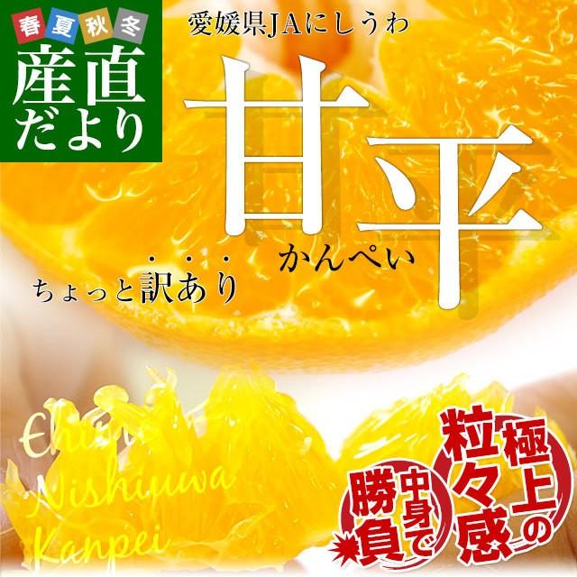 愛媛県より産地直送 JAにしうわ 甘平(かんぺい) ...