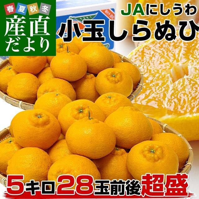 愛媛県より産地直送 JAにしうわ しらぬひ 小玉 Mサイズ 5キロ (28玉前後) 送料無料 柑橘 オレンジ 不知火 しらぬい