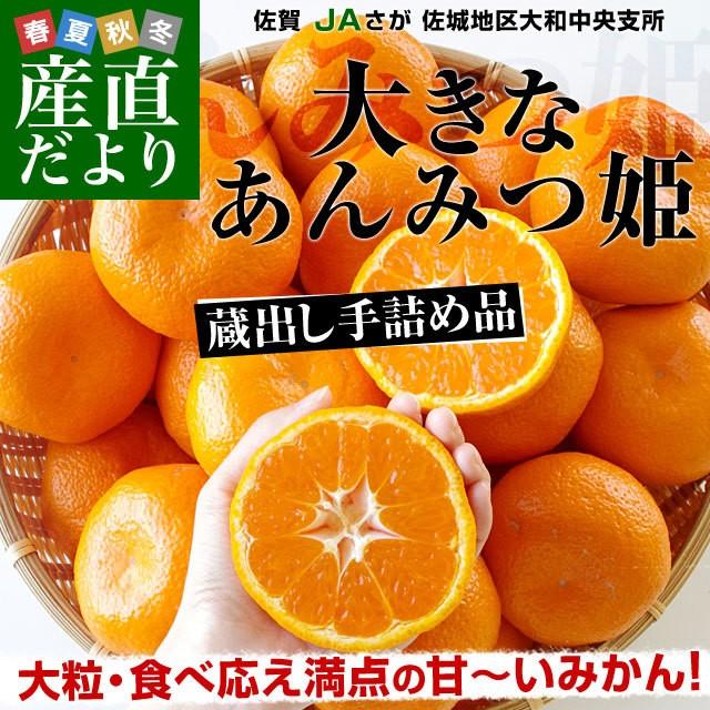 佐賀県産 JAさが 佐城地区大和中央支所 蔵出しみ...