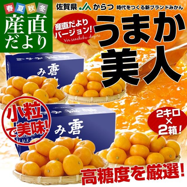 送料無料 佐賀県より産地直送 JAからつ うまか美人 高糖度みかん 小粒 3Sから2Sサイズ 2キロ×2箱 (合計80玉前後) U・M・K美人 蜜柑 ミカ