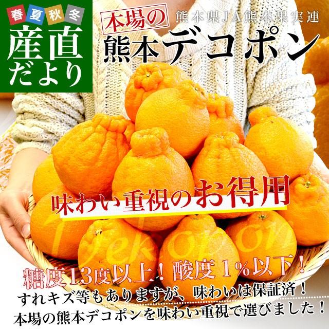 熊本県産 JA熊本果実連 本場の熊本デコポン お...