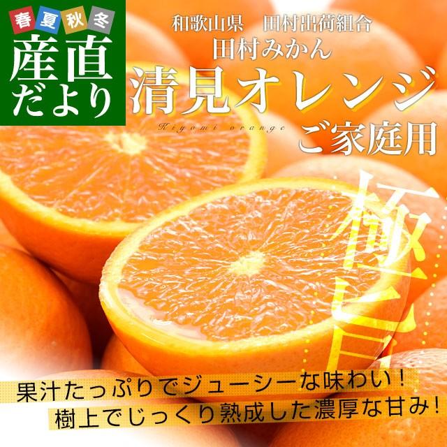 和歌山県より産地直送 田村出荷組合 清見オレンジ...