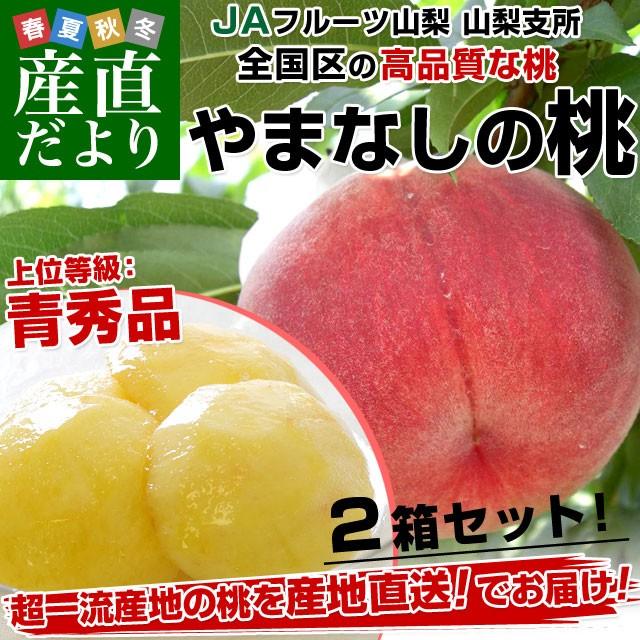 送料無料 山梨県より産地直送 JAフルーツ山梨 山...