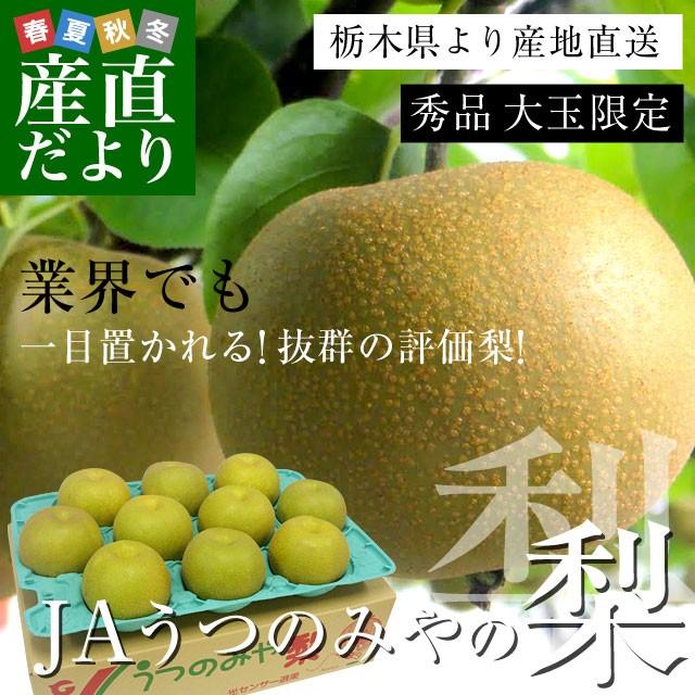 栃木県より産地直送 JAうつのみやの梨 大玉限定 4...