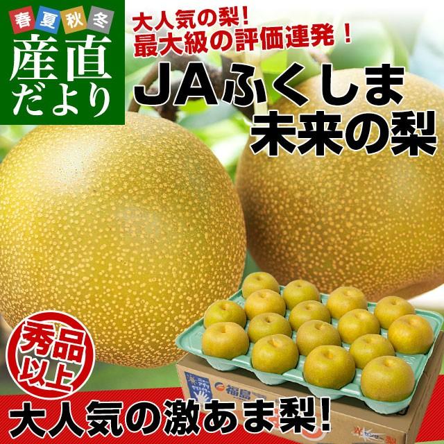 福島県より産地直送 JAふくしま未来の梨 (幸水梨...