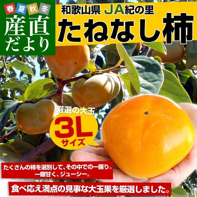 和歌山県より産地直送 JA紀の里 たねなし柿 大玉3...