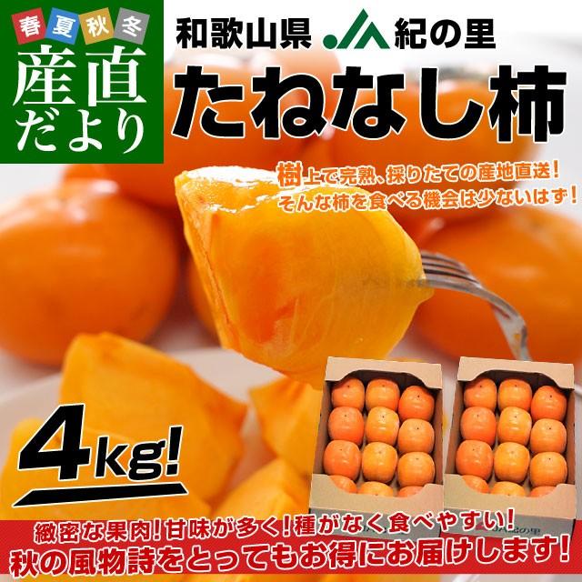和歌山県より産地直送 JA紀の里 たねなし柿 合計4...