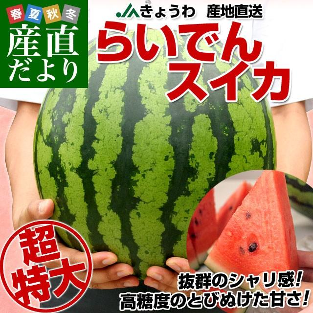 送料無料 北海道より産地直送 JAきょうわ らい...