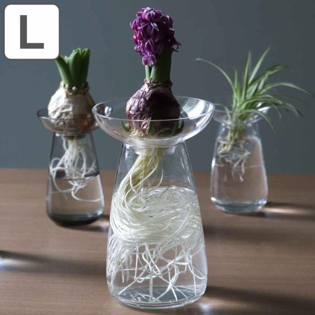 キントー KINTO 花器 AQUA CULTURE VASE Lサイズ ガラス 花瓶 おしゃれ ( フラワーベース 花 グリーン 栽培 ハーブ インテリア