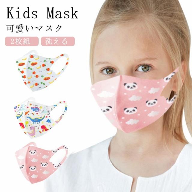 送料無料 マスク 子供用 2枚組 キッズマスク 洗え...