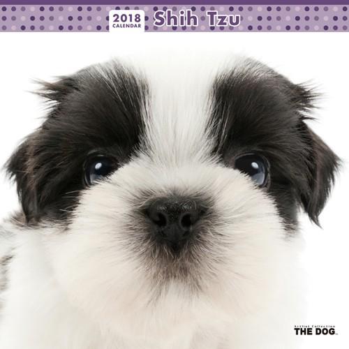 【数量限定】2018年度版 THE DOG カレンダー シー...