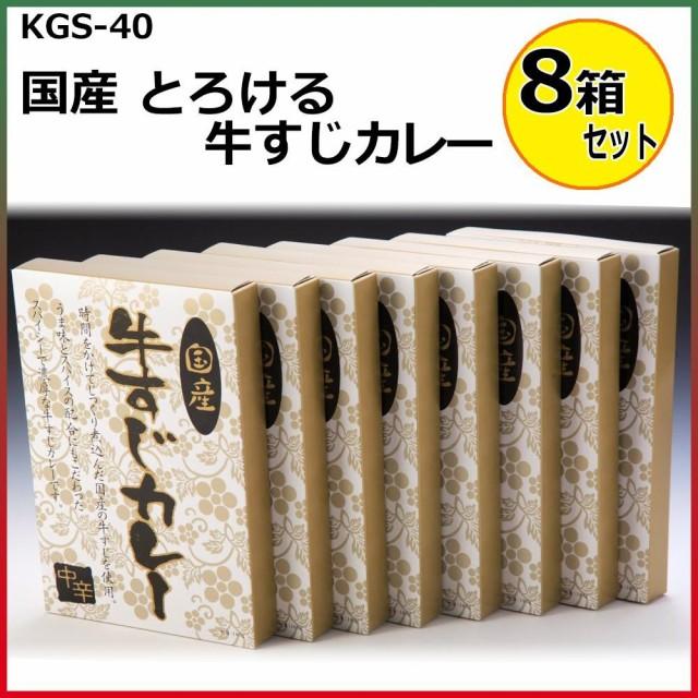 国産 とろける牛すじカレー 180g×8箱セット KGS-...