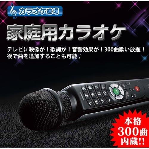 カラオケ道場 DCT-300(支社倉庫発送品)