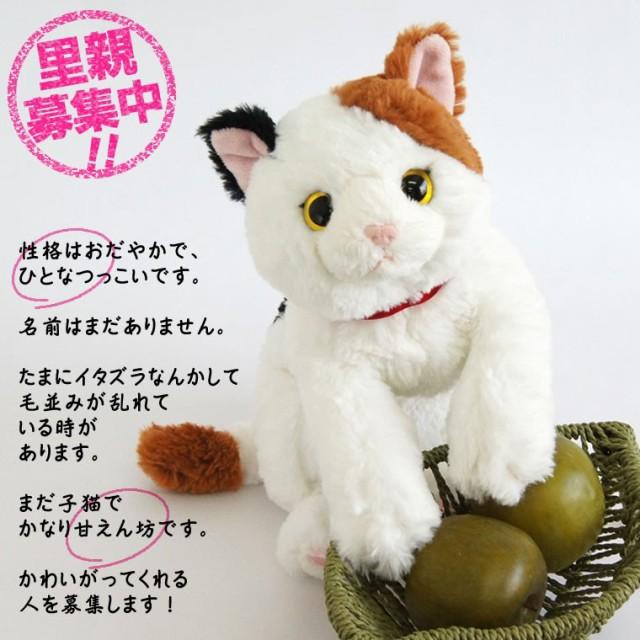猫 ぬいぐるみ ギフト 誕生日プレゼント 女性 癒...