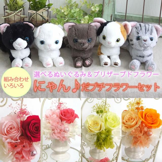 猫好きな方への花ギフト決定版♪【にゃん♪だプチ...