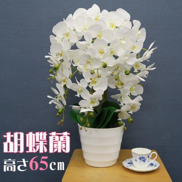 人工観葉植物 胡蝶蘭 白 65cm 造花 インテリア 観...