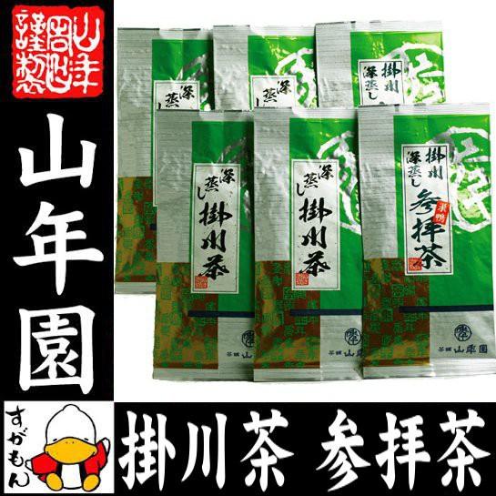 日本茶 お茶 茶葉 参拝茶100g×2袋+掛川深蒸し茶1...