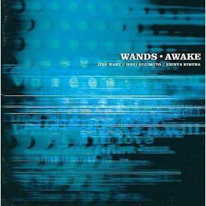 [送料無料] WANDS / AWAKE [CD]
