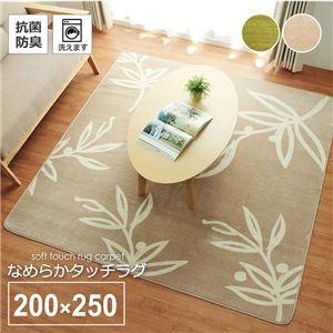 ds-2319455 花柄 リーフ柄 ラグマット/絨毯 【3畳...