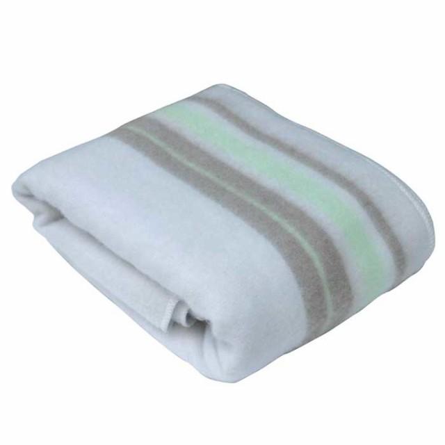 TEKNOS 【送料無料】EM-509M 敷き毛布 (EM509M)