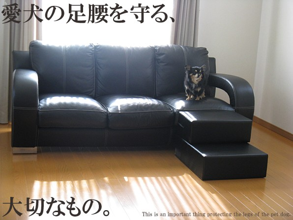犬 スロープ