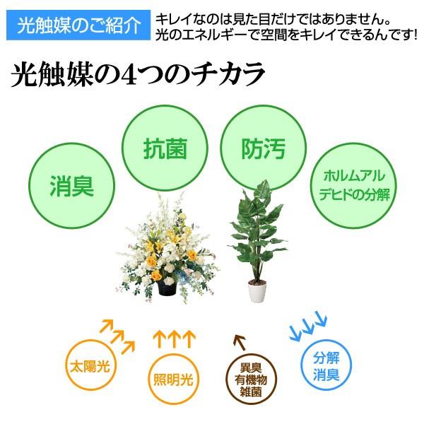 光触媒により消臭・抗菌・防汚・ホルムアルデヒドの分解効果があります。
