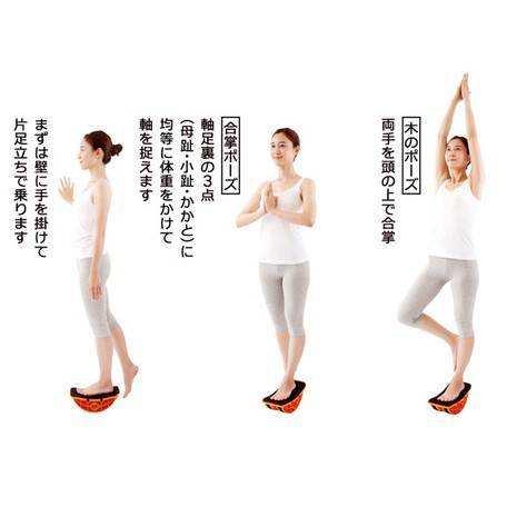 体幹バランストレーニング ユラミンゴ ダイエット フィットネス エクササイズ メンズ レディス