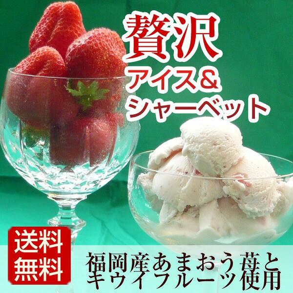 アイスクリーム シャーベット つめ合わせ 博多あまおうアイスとキウイシャーベット