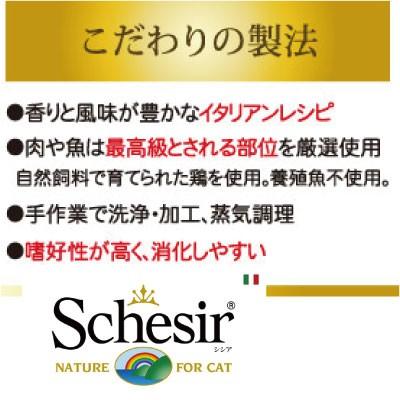 シシア キャット ツナ&エビ 70g 人気 注目 売れ筋 パウチ 無添加・無着色 ファンタジーワールド 成猫用 キャットフード