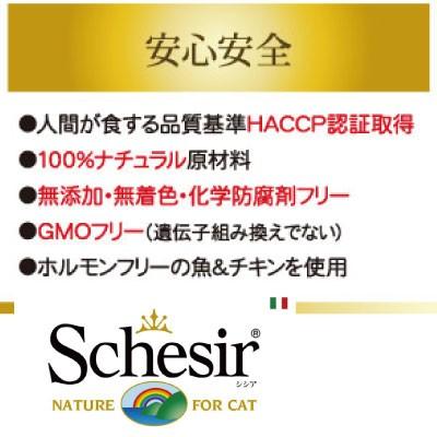 シシア キャット チキンフィレ&パイナップル 75g 人気 注目 売れ筋 無添加・無着色 ファンタジーワールド 成猫用 キャットフード