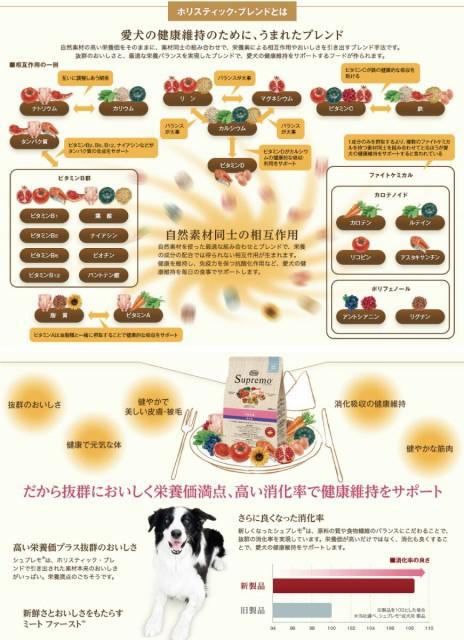 シュプレモ子犬/成犬/シニア