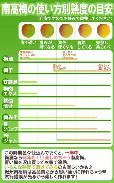 """【送料無料】紀州・和歌山産 """"南高梅 青梅"""" 秀品 4L 約5kg【予約 5月中旬~6月初旬】"""