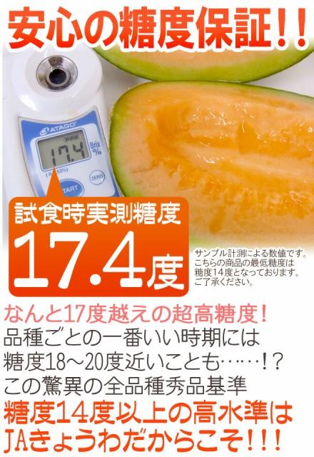 """北海道 赤肉メロン """"らいでんレッドメロン"""" 1玉 約2kg前後 7玉購入で1玉おまけ♪【予約 7月以降】"""