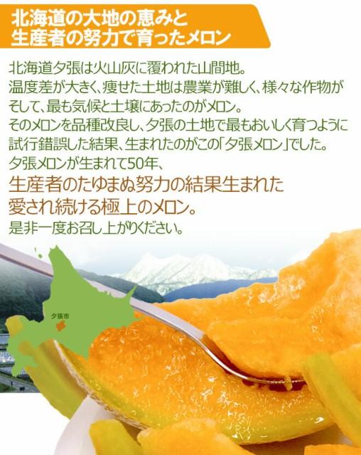 """北海道 """"夕張メロン"""" 約1.3kg以上 共撰・良品以上 【予約 7月中下旬以降】"""